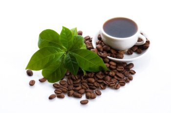 Lehigh County water filtration and office coffee service